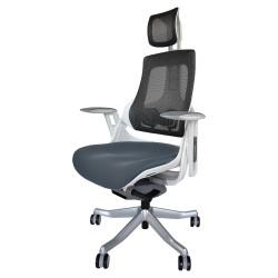 Pisarniški stol Ergovision iTrek 01 (WH22SA-MCH-FSG)