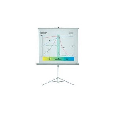 Projekcijsko platno 150x150 (700405098)